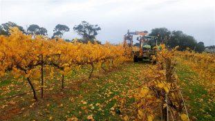 Emmetts now serving customers in the Fleurieu Peninsula, South Australia